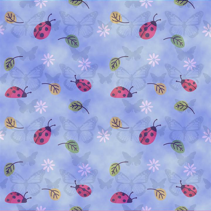 Illustrazione gratis sfondo coccinella blu natura - Coccinella foto gratis ...