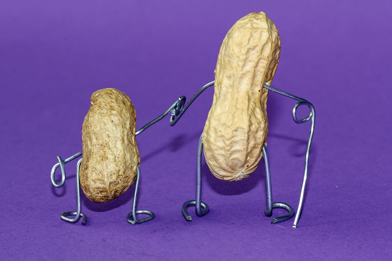 Смешные картинки арахиса, рождества