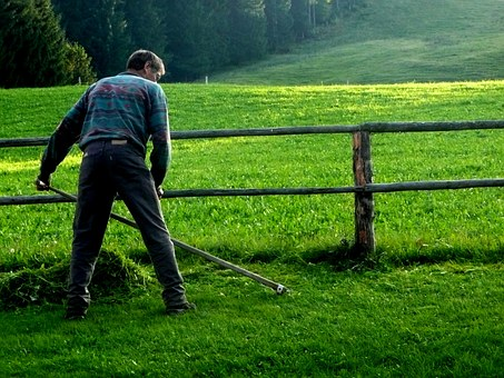 Mow, Scythe, Agriculture, Grass