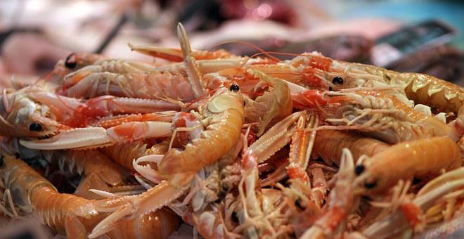 Prawn, Marine, Shrimp, Food, Seafood