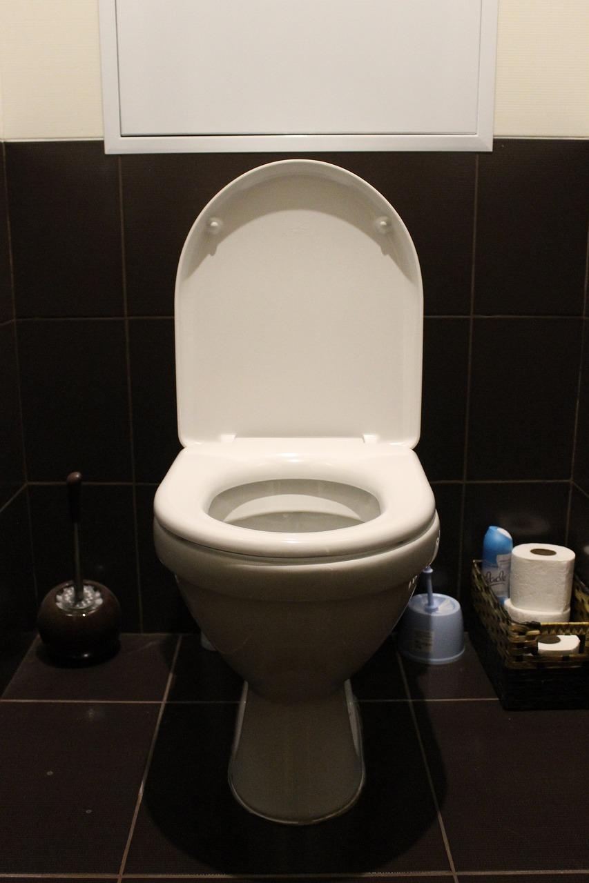 拿饭盒去女厕所接尿喝 厕所接尿干什么用