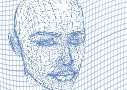 Head, Wireframe, Face, Lines, Wave