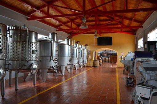 Vin, La Production, Winery, Boire