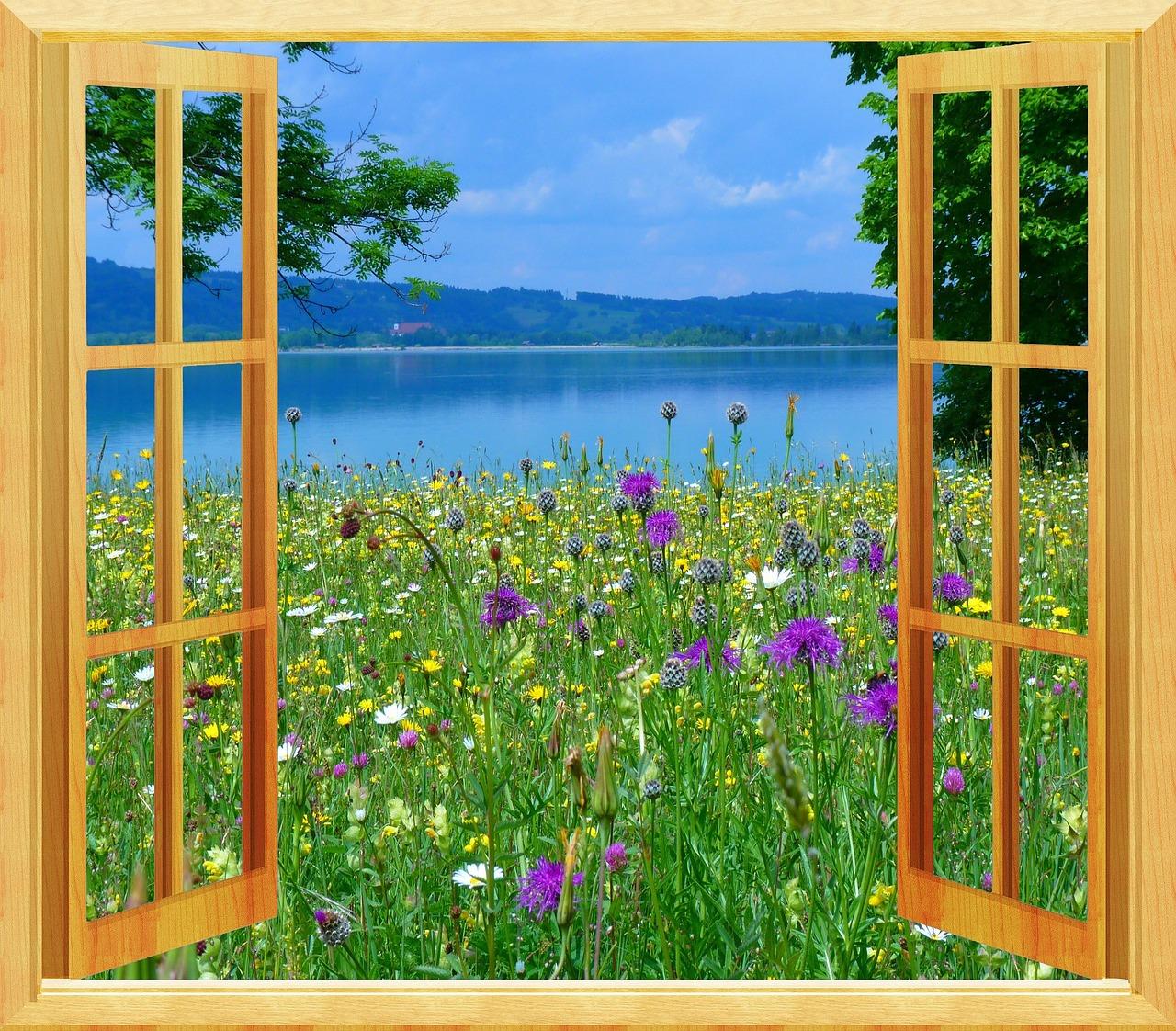 Картинки открытое окно летом