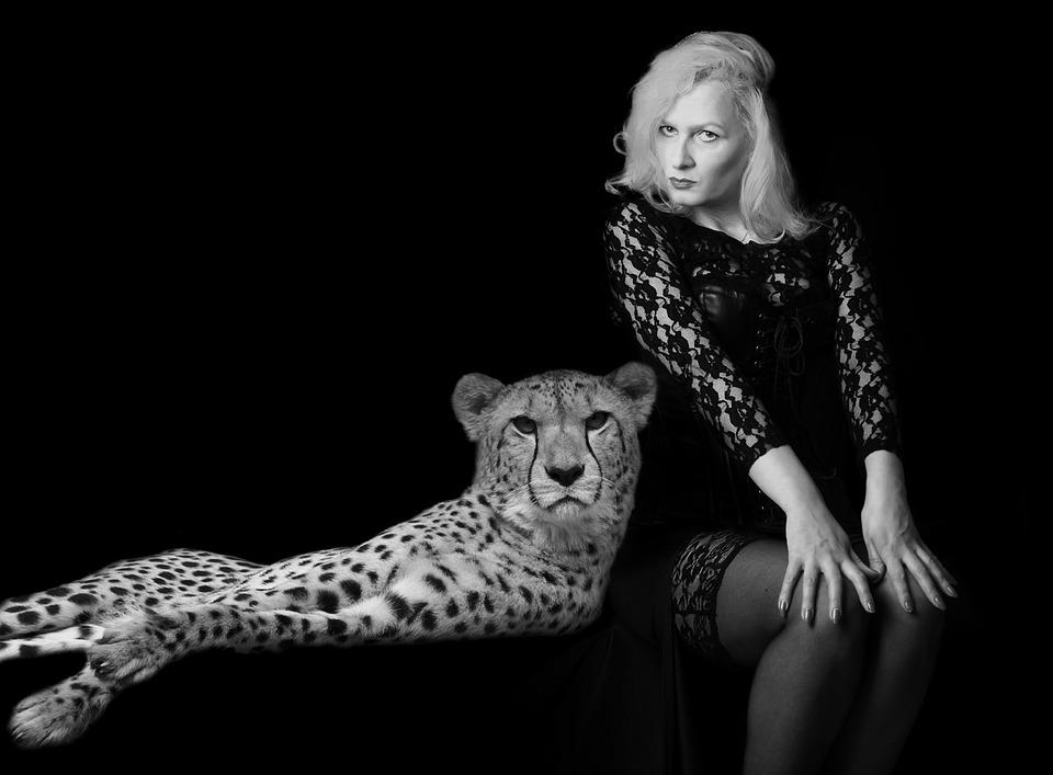 mulher leopardo homem e animal foto gratuita no pixabay