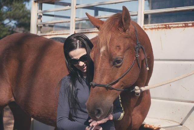 Foto gratis: Gadis, Kuda, Hewan Peliharaan - Gambar gratis di ...
