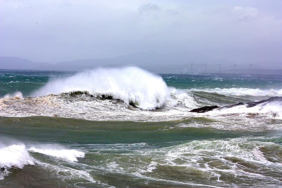 Photo gratuite mer vagues oc an atlantique image - Plantes bord de mer atlantique ...