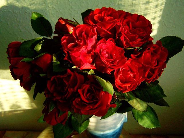 photo gratuite rose rouge bouquet fleur image. Black Bedroom Furniture Sets. Home Design Ideas