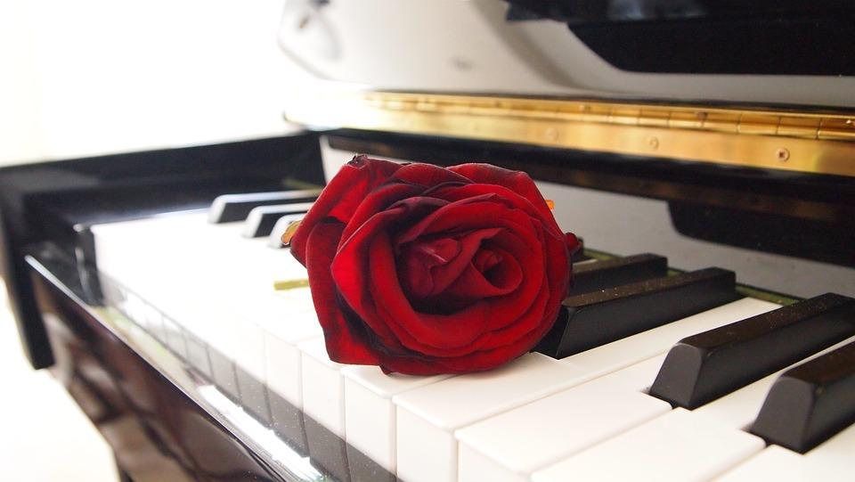 Rose Pianoforte Soggiorno · Foto gratis su Pixabay