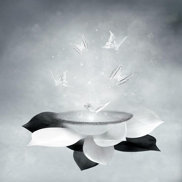 Kunst, Fantasie, Background, Achtergrond, Vlinders