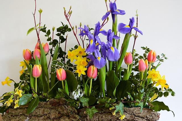 Free photo: Bouquet, B...
