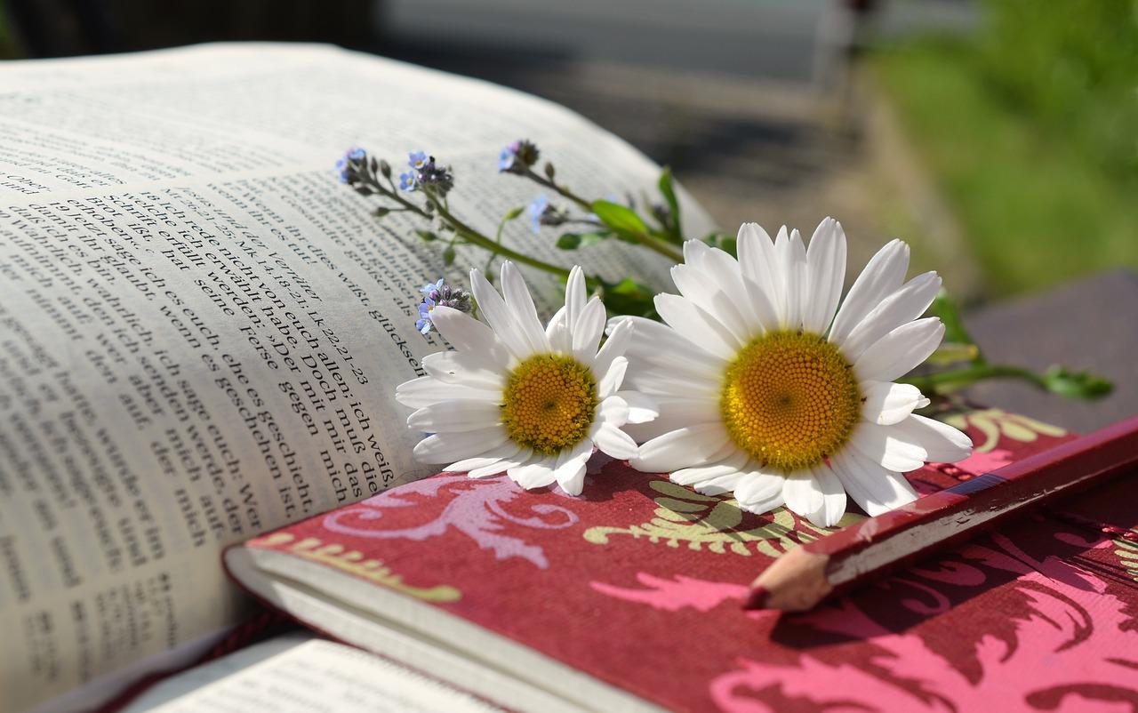 Фото раскрытой книги с цветами