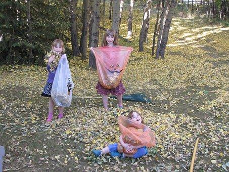 秋, 葉, 掃除, シーズン, 色, ハロウィーン, 感謝, 装飾, 10月