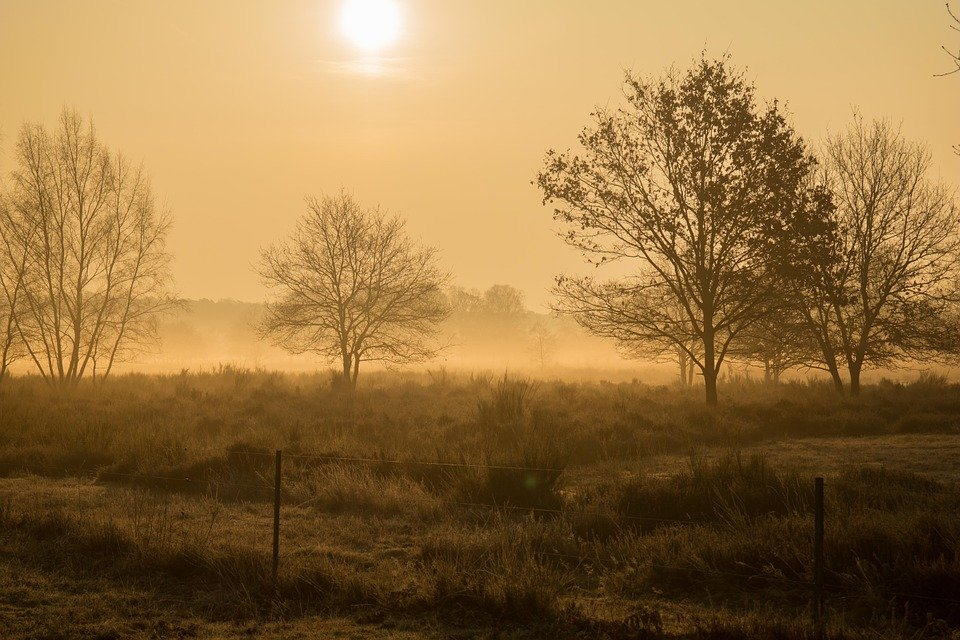 Morgenstimmung, Heide, Wahner Pagan, Sunrise, Hazy