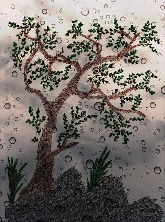 Baum Gemalt Gezeichnet Kostenloses Foto Auf Pixabay