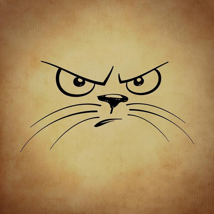 Download 94+ Gambar Emoticon Kucing Paling Bagus Gratis