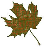 leaf, let go, autumn