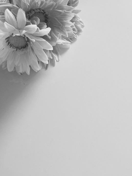 410+ Gambar Hitam Putih Romantis HD Terbaru