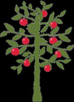 Apple Tree, Tree, Apple, Nature, Fruit