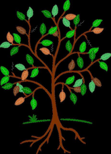 baum wurzeln Äste · kostenloses bild auf pixabay