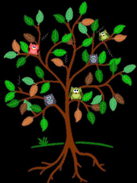 free illustration tree root leaves owls green free