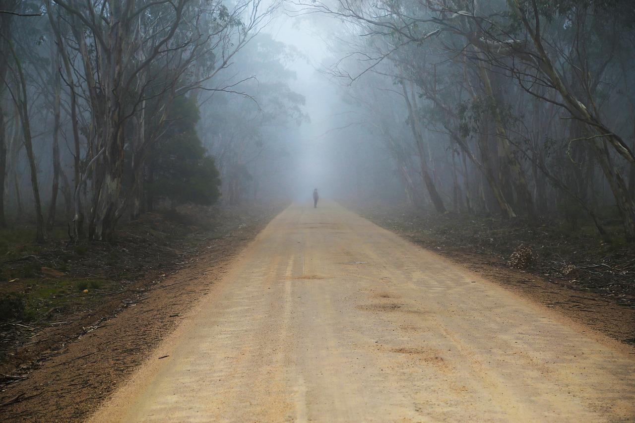 мастерицы, мистика на дороге реальное фото станиславович, тихий натуре