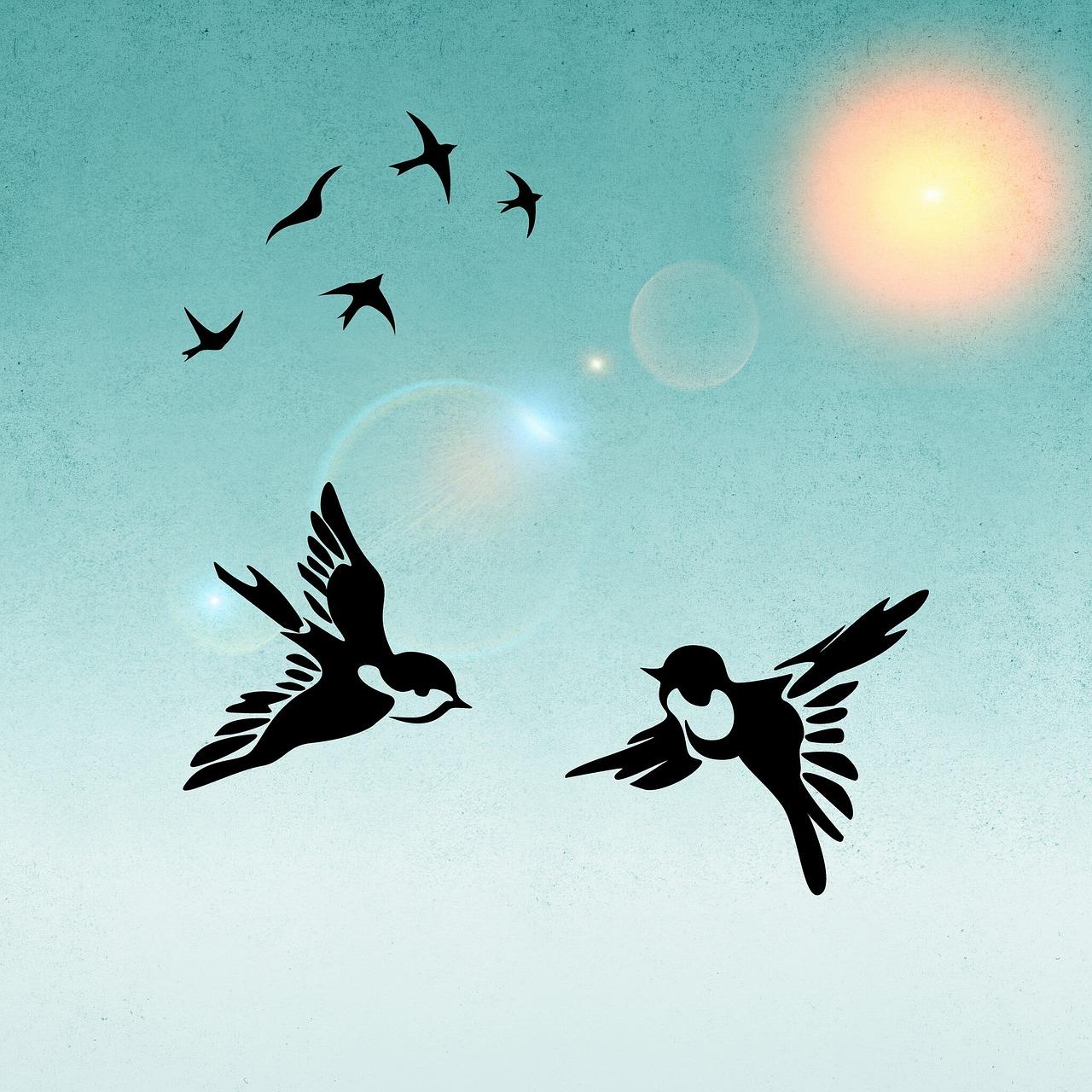 первые картинки птичек улетающих весной, когда снег
