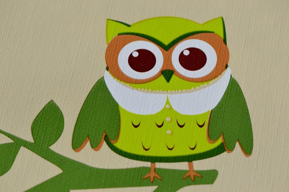 Owl Colorful Funny Free Image On Pixabay