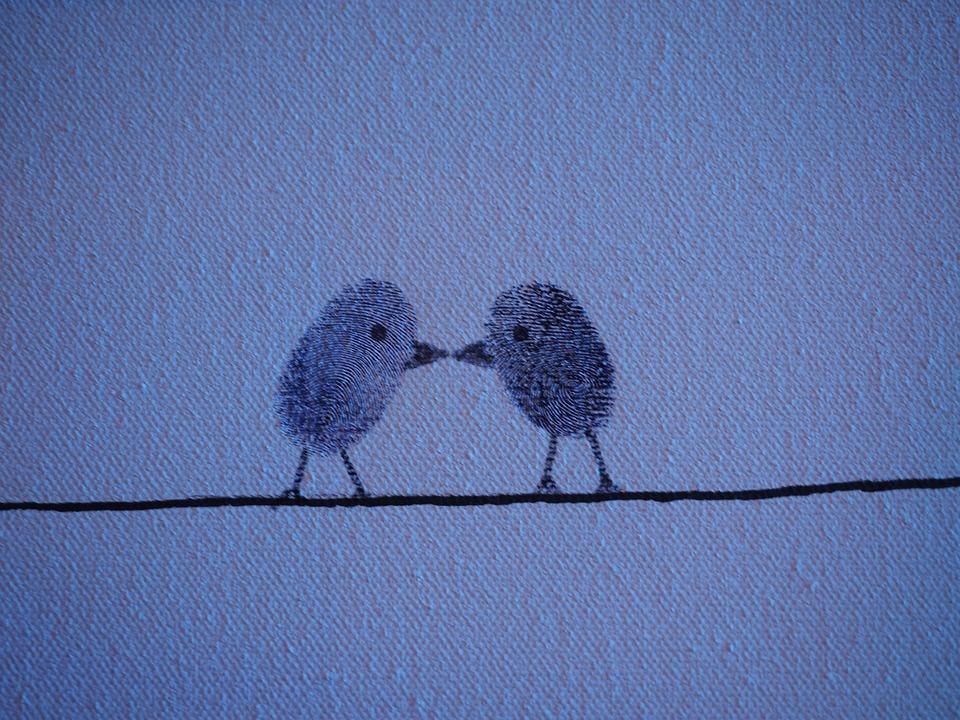 Eufalconimorph. In: pan-Aves [online].