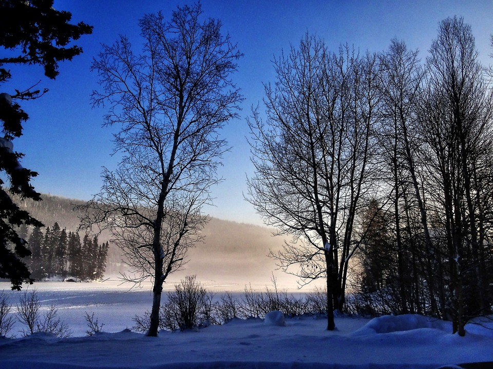 photo gratuite paysage d 39 hiver arbres hiver image gratuite sur pixabay 694131. Black Bedroom Furniture Sets. Home Design Ideas