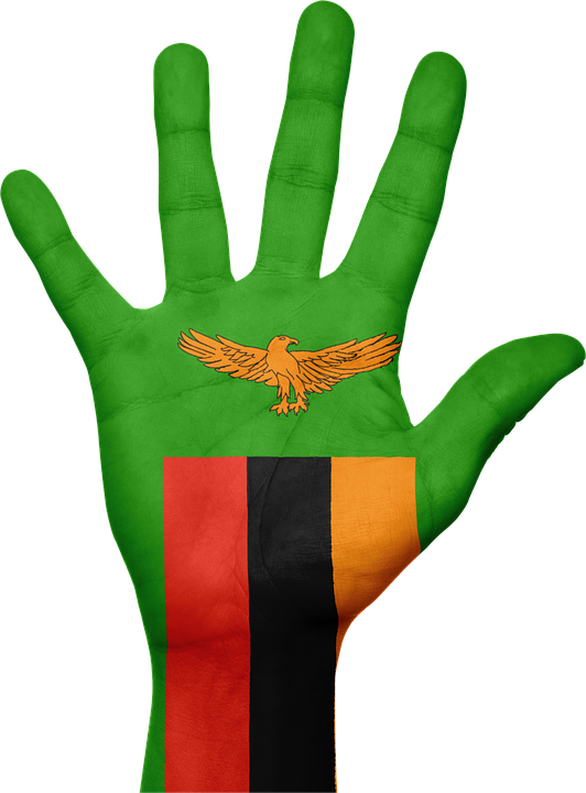Zambia Flag Hand - Free image on Pixabay