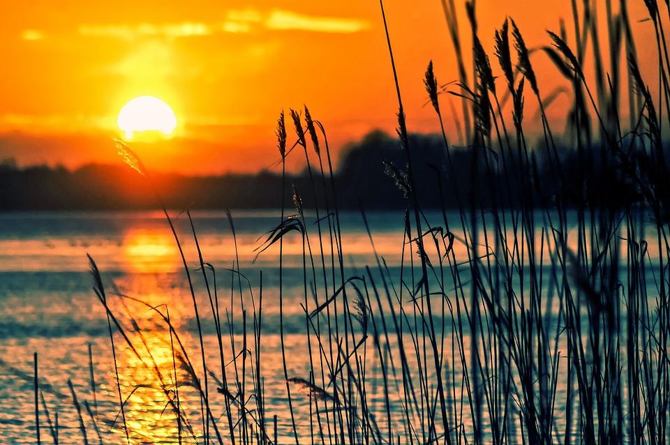 Озеро, Тростник, Закат, Пейзаж, Природа, Декорации