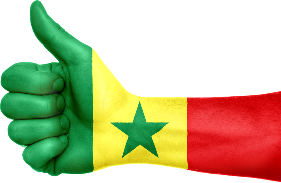 Senegal Flag Hand National Fingers 697542 further Rod Planck Hvita River Iceland 6790 together with Eliot Porter further Ibis White besides Paris birds grayscale pigeons sitting. on colors on birds