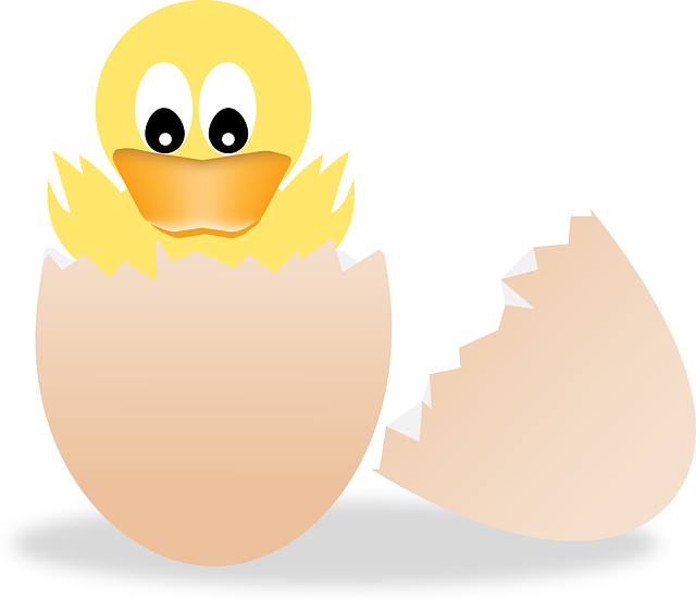 картинка вылупившегося цыпленка чтобы