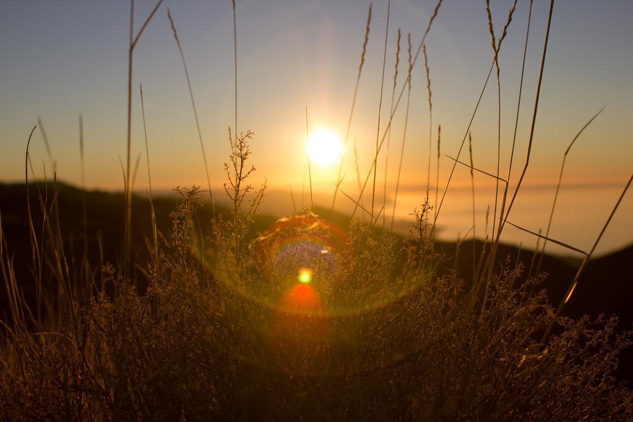 Света солнышко картинки
