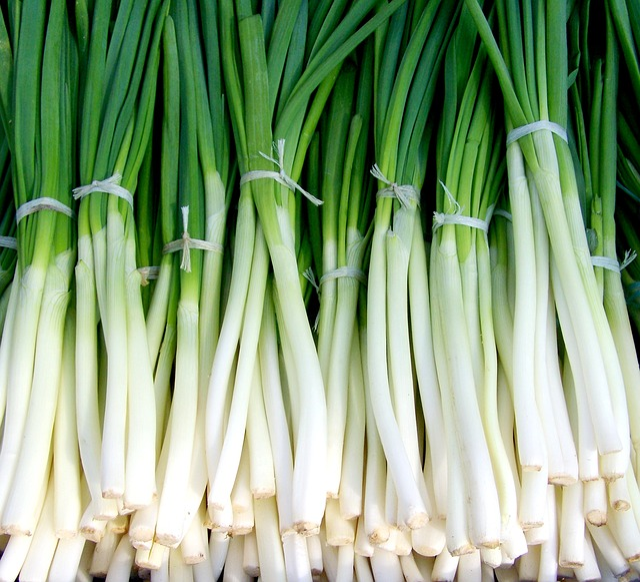 Onion Wallpaper Hd: Free Photo: Green Onion, Spring Onions