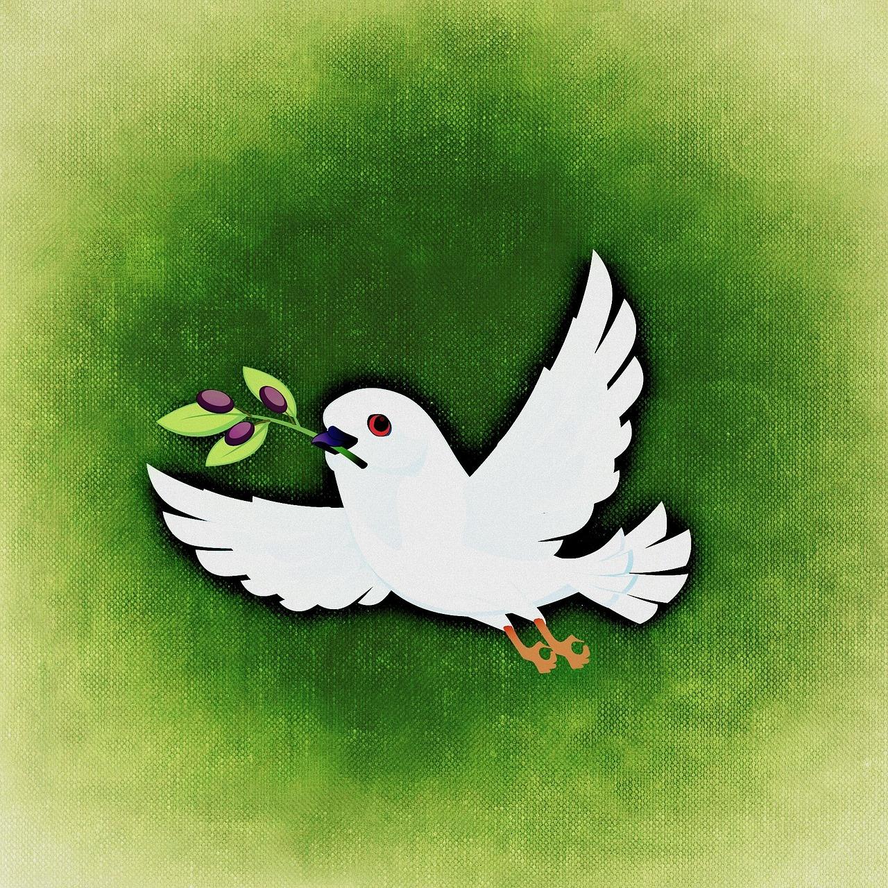 Картинки с голубем символ мира