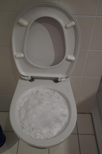 kostenloses foto toilette klo wc s ubern putzen kostenloses bild auf pixabay 701475. Black Bedroom Furniture Sets. Home Design Ideas
