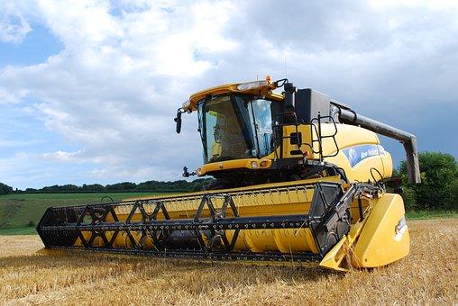 В Белгородской области сбор зерна достиг 3 млн тонн, убрано 94 процентов всех площадей