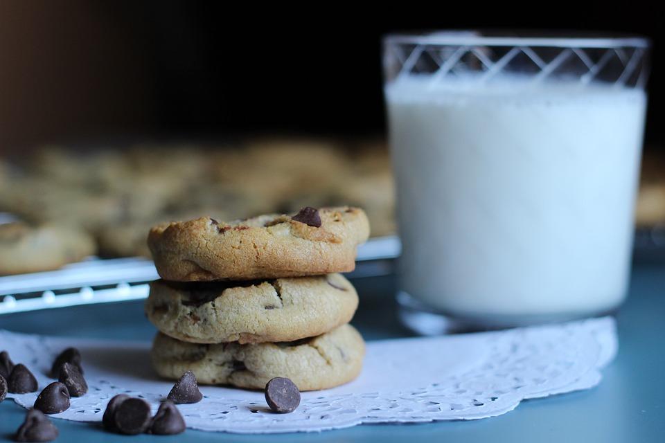 Chocolat, Puce, Cookie, Dessert, Le Lait, Cuire Au Four