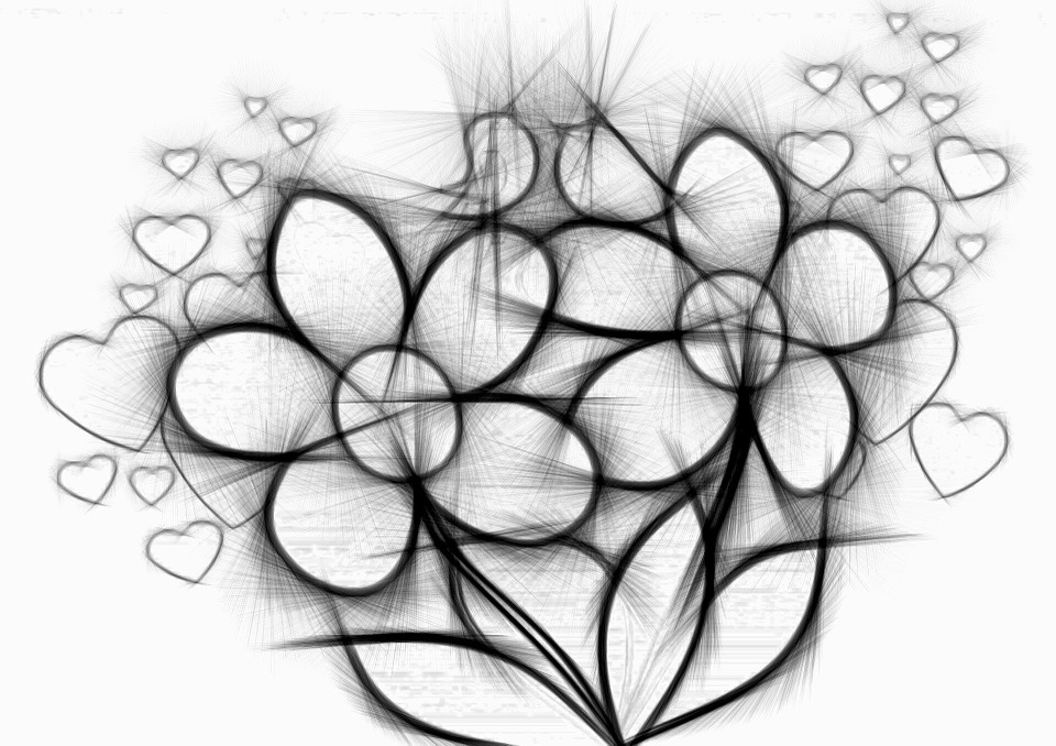 Flowers love heart drawing pencil
