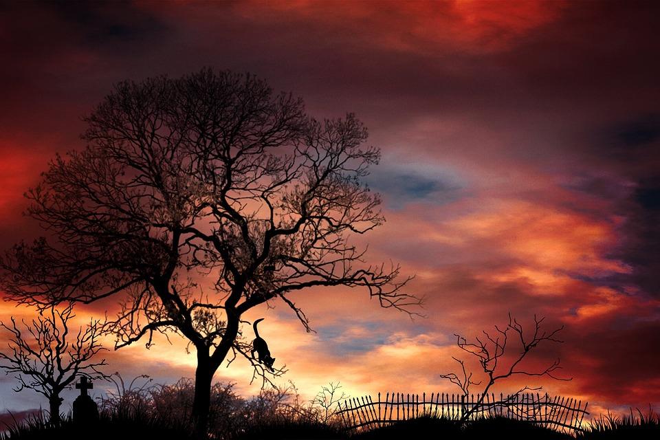 Kostenloses Foto: Grabstein, Friedhof, Bäume - Kostenloses ...