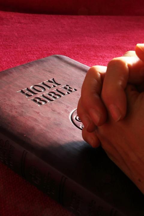 Free Photo Bible Holy Hands Pray Prayer Free Image