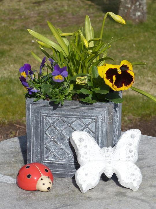 Photo gratuite fleurs printemps pot jardin image for Fleurs jardin printemps