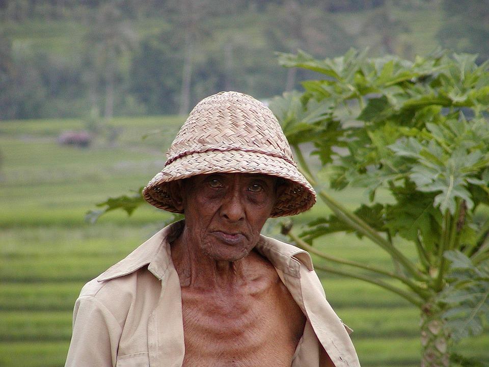 Bauer Kemiskinan Orang Tua Foto Gratis Di Pixabay