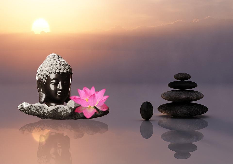 image zen a telecharger gratuitement