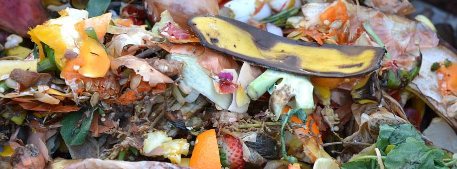 Compost, Fruit And Vegetable Waste