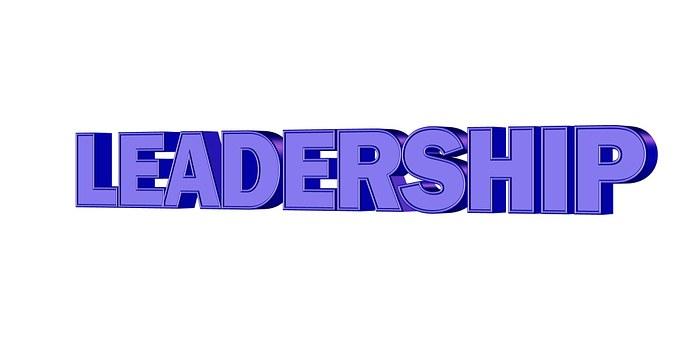Leadership, Gestion, Directeur