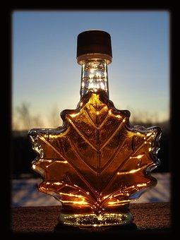 Maple Syrup Sun Syrup Syrup Syrup Syrup Sy