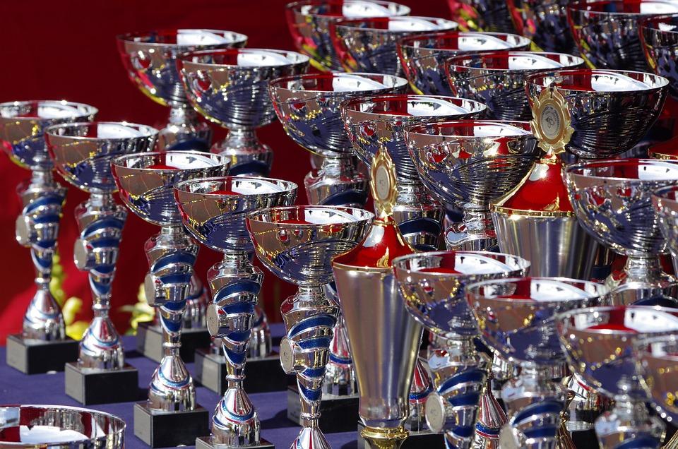 Zion's trophy cabinet is already bulging